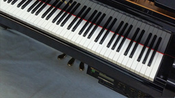 Player Piano - Stock Item 02